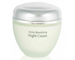ANNA LOTAN NEW AGE CONTROL ACTIVE BEAUTIFYING NIGHT CREAM 50 ML