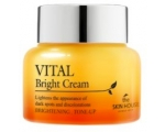 THE SKIN HOUSE VITAL BRIGHT CREAM, HELESTAV VITAMIINIRIKAS NÄOKREEM