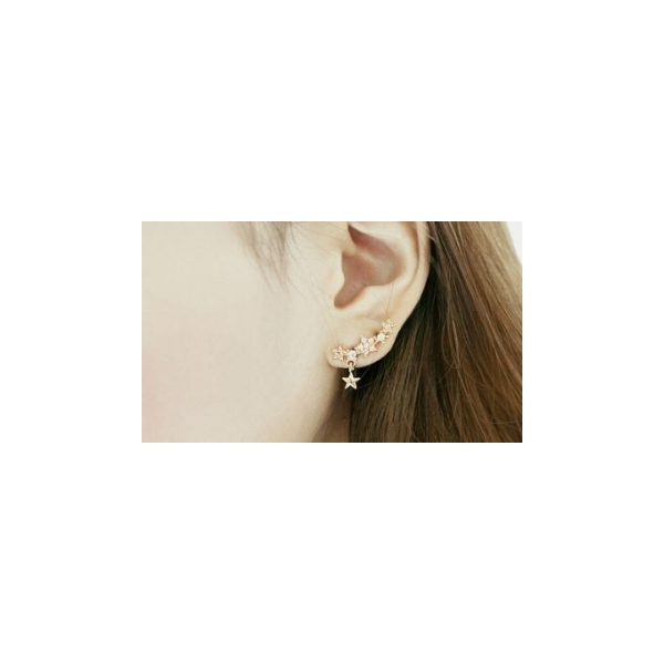 Earrings 27.JPG