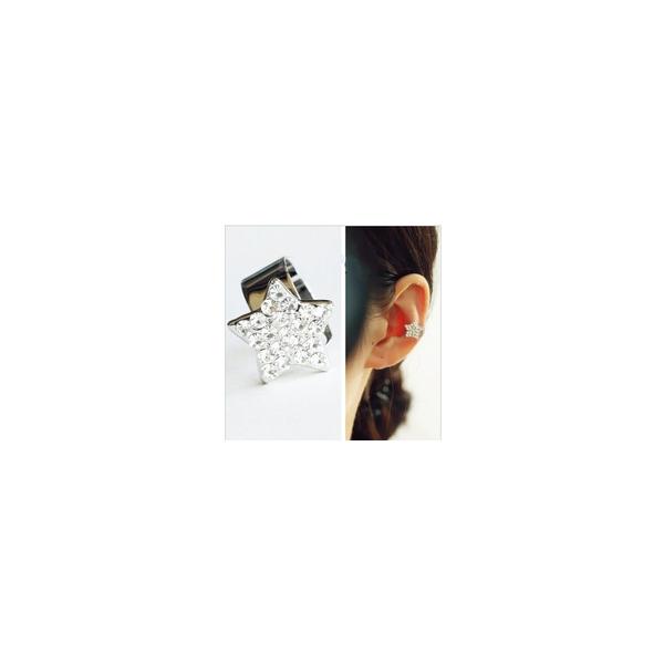 ear clip 1.jpg