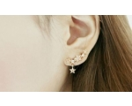 Earrings 27