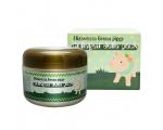 Elizavecca Green Piggy Collagen Jella Pack Pig Mask for Wrinkles Intense Hydration 100 g