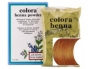 Colora Henna Powder Light Brown.jpg